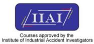 IIAI Logo